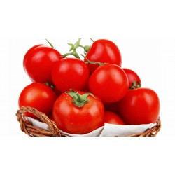 Tomatoes Basket ( Big)