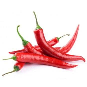 Red Chili Pepper- Shombo