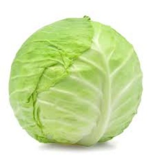 Cabbage - Green